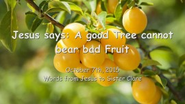 2015-10-07 - JESUS SAYS... A good Tree cannot bear bad Fruit