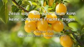 2015-10-07 - Jesus sagt... Ein guter Baum kann keine schlechten Fruechte tragen