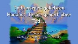 2015-10-26 - Tod unseres Hundes... Jesus spricht ueber Tod