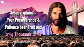 2015-11-10 - Patience-Perseverance-Salvation of Souls-Harvest of the Lord-Rapture-Love Letter from Jesus Christ