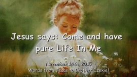 2015-11-14 - Jesus says... Come and have Pure Life in Me