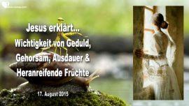 2015-08-17 - Geduld-Gehorsam-Ausdauer-Stimme Gottes horen-Heranreifende Frucht-Liebesbrief von Jesus