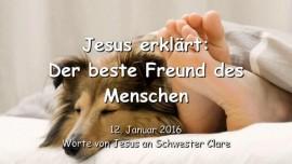 2016-01-12 - Jesus erklaert - Der beste Freund des Menschen