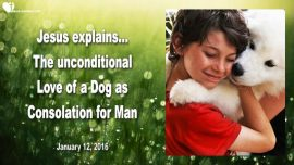 2016-01-12 - Mans Best Friend-Unconditional Love of a Dog as Consolation for Man-Love Letter from Jesus