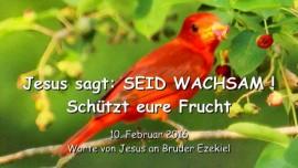 2016-02-10 - Jesus sagt - Seid wachsam - Schuetzt eure Frucht