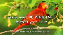2016-02-10 - Jesus says - Be vigilant - Protect your Fruit