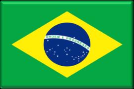 Flag brazilian-270x180px