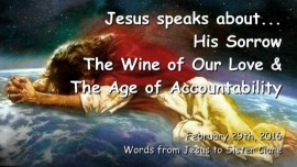 2016-02-29 - Jesus speaks about His Sorrow, the Wine of our Love and the Age of Accountability