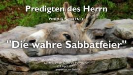 PREDIGTEN DES HERRN Gottfried Mayerhofer-42-Lukas-14_1-6 Vergeistigung-Die wahre Sabbatfeier