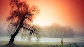Иисус говорит... Вы посланники для одинокой души