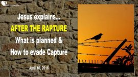2016-04-10 - After the Rapture-What is planned-How to evade Capture-Captivity-Love Letter from Jesus