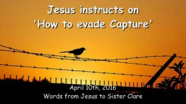 2016-04-10 - Jesus instructs - How to evade Capture