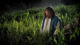 Иисус говорит... Я облеку вас в Мое смирение
