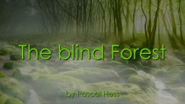 Pascal-Hess - Songs Loveletters from Jesus - The blind Forest