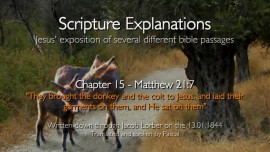 se15_jesus-explains-scripture_they-brought-the-donkey_matthew-21_7_revealed-through-jacob-lorber