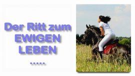 Schrifttext Erklaerungen Jakob Lorber Matthaeus-21_7-Der Ritt zum ewigen Leben-Eselin-Demut-Sanftmut-Weisheit