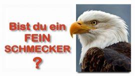 Schrifttexterklaerungen Jakob Lorber-14-Matthaeus 24 26_28-Wueste-Kammer-Glaubt es nicht-Aas-Adler-Feinschmecker