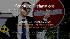 se23-jesus-explains-scripture-you-blind-leaders-who-strain-out-a-gnat-and-swallowing-up-a-camel-matthew-23-24
