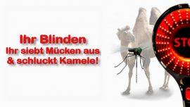 Schrifttexterklaerungen Jakob Lorber-Matthaeus 23_24 Verblendete Fuehrer-Blinde-Geistige Blindheit-Muecken-Kamel