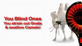 Scripture Explanations Jakob Lorber-Matthew 23_24-Blind Leaders-Spiritual Blindness-Gnats-Camel