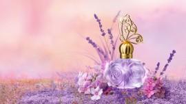 Иисус говорит о сладком аромате святости