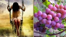Иисус объясняет… Я произвожу сладкие плоды и исцеление из самых тяжелых потерь
