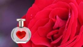 Jesus dice…atrae las almas hacia mi con la Fragancia de Mi Amor