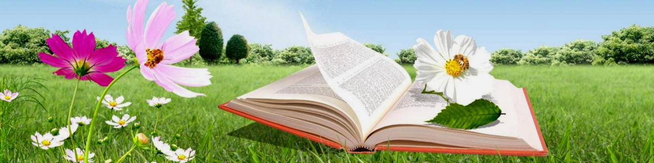 Das Buch des wahren Lebens - Book of the true Life - Libro de la vida veradera - Livre de la vraie vie - 3 Testament