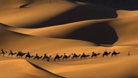 Bölüm 9... İsrail halkının hikâyesi ve şahsiyetleri