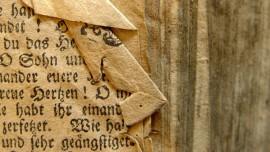 ÜÇÜNCÜ ANTLAŞMA Bölüm 15… Sahte Hristiyanlar, Kilisede Yanlış Öğretiler ve Kötü Durumlar