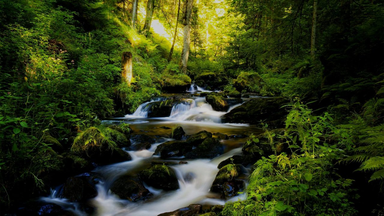 ÜÇÜNCÜ ANTLAŞMA Bölüm 22... Tanrı'nın Sevgisi, Koruması ve Merhameti