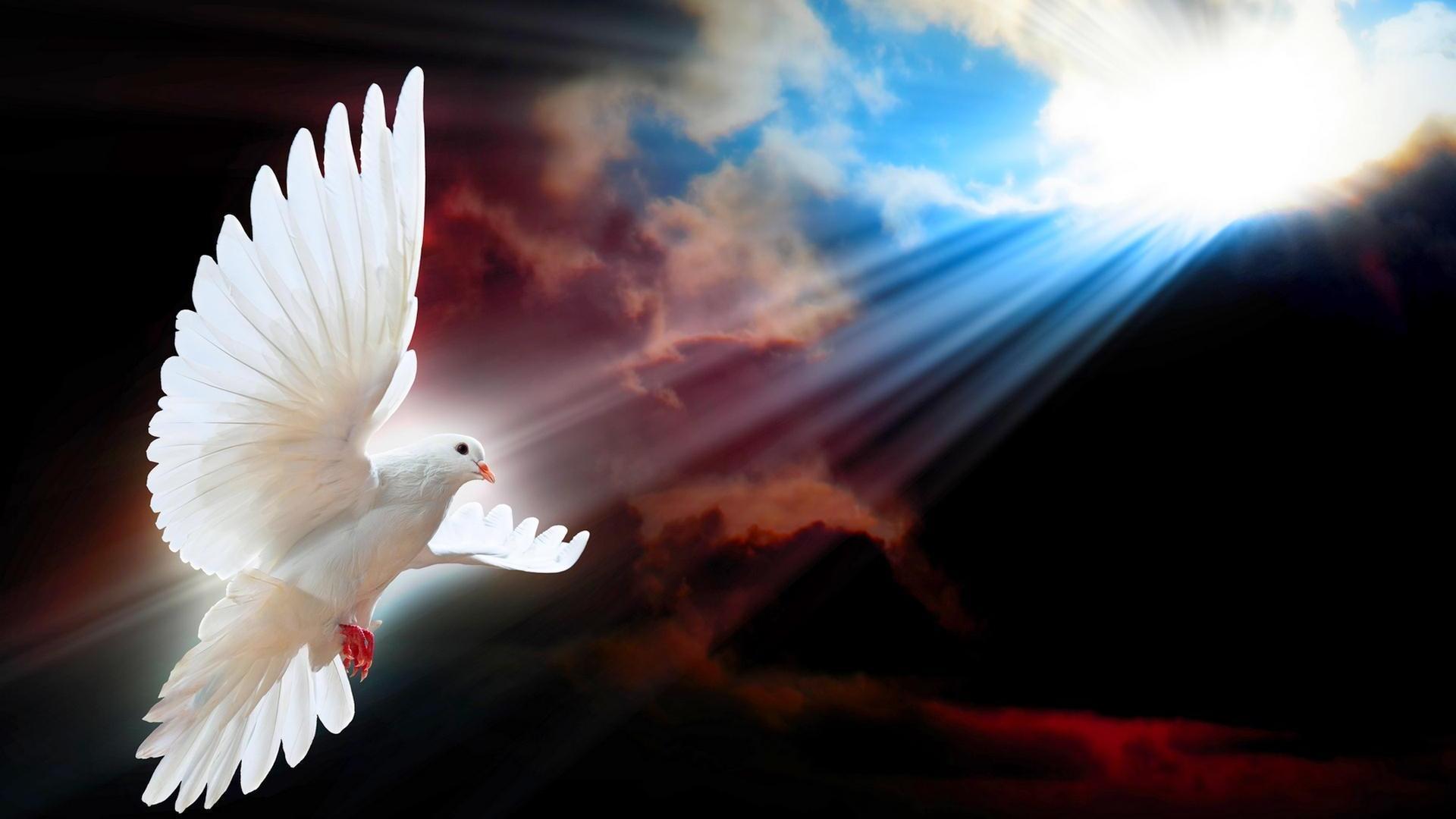 Bölüm 58… Christus´un Barış Krallığı ve Yaratılışın Tamamlanması