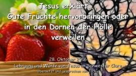 2016-10-28-jesus-erklaert_gute-fruechte-hervorbringen-oder-in-den-dornen-der-hoelle-verweilen