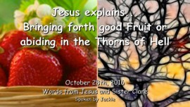 2016-10-28-jesus-explains_bringing-forth-good-fruit-or-abiding-in-the-thorns-of-hell
