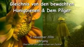 2016-11-02-gleichnis-von-den-bewachten-honigbienen-und-dem-pilger