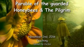 2016-11-02-parable-of-the-guarded-honeybees-and-the-pilgrim
