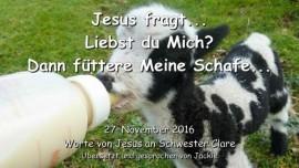 2016-11-27-jesus-fragt-liebst-du-mich-dann-fuettere-meine-schafe