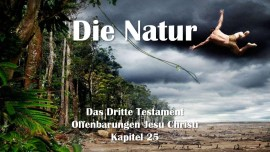 das-dritte-testament-kapitel-25-die-natur