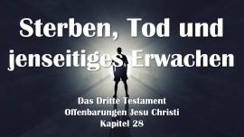 Das 3. Testament Kapitel 28 - Tod & Jenseitiges Erwachen