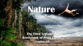the-third-testament-chapter-25-the-nature