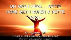 2016-11-30-oh-mein-herr-bitte-hoere-mein-rufen-und-rette-mich
