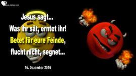 2016-12-16 - Saen und ernten-Was ihr sat erntet ihr-Fur Feinde beten-Nicht fluchen-Segnen-Liebesbrief von Jesus