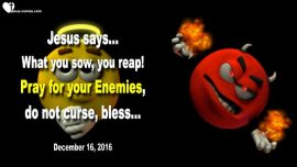 2016-12-16 - Sow and reap-What you sow you reap-Pray for Enemies-Curse not-Bless-Love Letter from Jesus