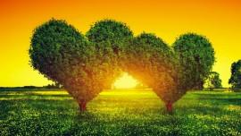 Jésus parle de l'amour authentique comme remède & l'interprétation des rêves