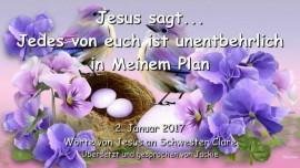 2017-01-02-jesus-sagt-jedes-von-euch-ist-unentbehrlich-in-meinem-plan