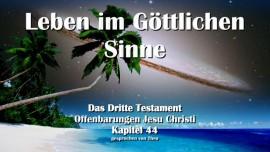 das-dritte-testament-kapitel-44-leben-im-goettlichen-sinne-das-3-testament-44