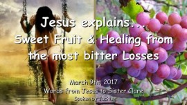 2017-03-09 - Jesus explains-Sweet Fruit and Healing from Losses-LoveLetter from Jesus