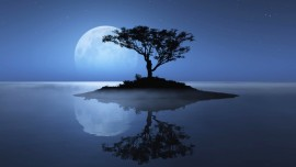 Bölüm 63 - 2… (Jesus´un) Elçiliği ve Ruhaniyet