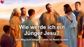 Wie werde ich ein Nachfolger von Jesus-Reich Gottes-Ewiges Leben-Das Grosse Johannes Evangelium Jakob Lorber