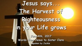2017-06-04 - Jesus says-The Harvest of Righteousness grows in your Life-LoveLetter from Jesus